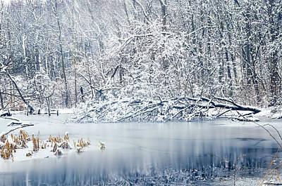 Winter Wonderland 2 Print by Shara Lee