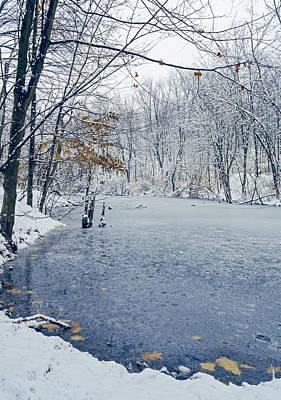 Winter Wonderland 3 Print by Shara Lee