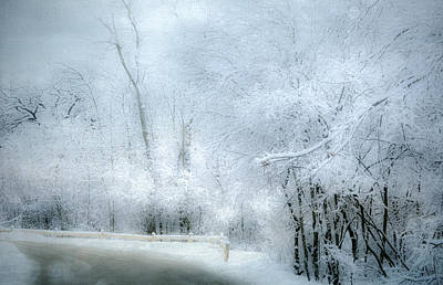Winters Dreamy Landscape Print by Julie Palencia