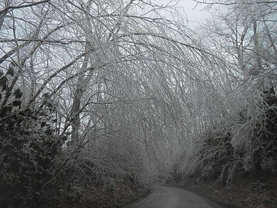Photograph - Winter's Road Block by Diannah Lynch