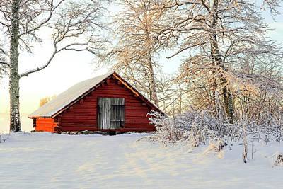 Winter's Storage Print by Marius Sipa