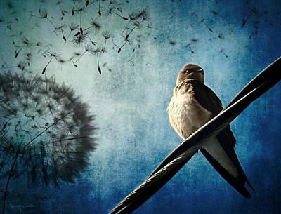 Swallow Digital Art - Wishing Swallow by Nancy  Coelho