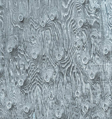 Ply Wood Photograph - With So Many Bull's Eyes, It Could Be A Target Board.  by Bijan Pirnia