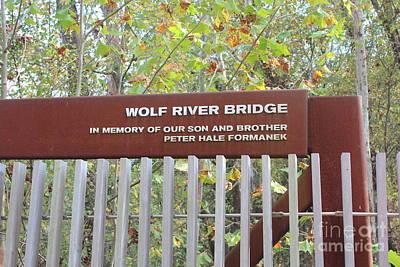 Memphis Photograph - Wolf River Bridge by Amy Wilkinson