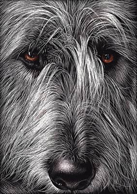 Scratchboard Mixed Media - Wolfhound by Elena Kolotusha