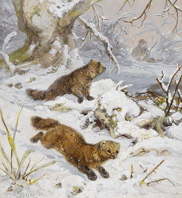 Wildlife Landscape Painting - Wolverines In The Snow by August Specht
