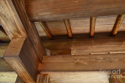 Indiana Photograph - Wood Abstract  by Amy Lucid
