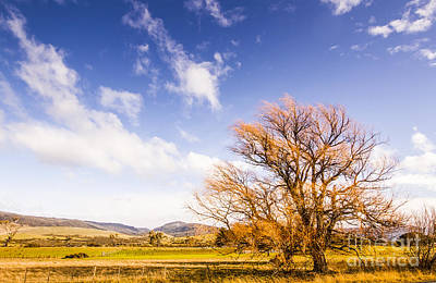 Woodbury In Fall Print by Jorgo Photography - Wall Art Gallery