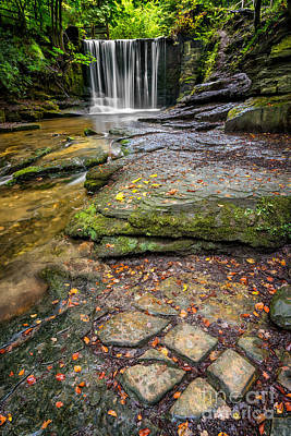 Woodland Waterfall Print by Adrian Evans