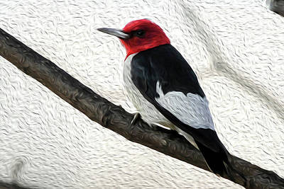 Woodpecker Mixed Media - Woodpecker On A Limb by Michelle McPhillips