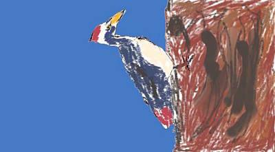 Woodpecker Mixed Media - Woodpecker by Peter Franczyk