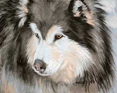 Arctic Dog Painting - Woolly Malamute by Janae Lehto