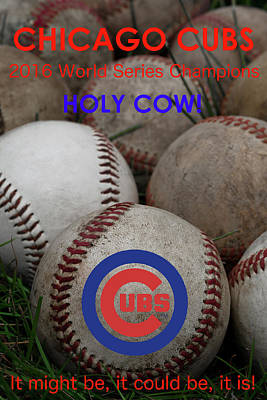 Baseball Photograph - World Series Champions - Chicago Cubs by David Patterson