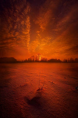 World Without End Print by Phil Koch