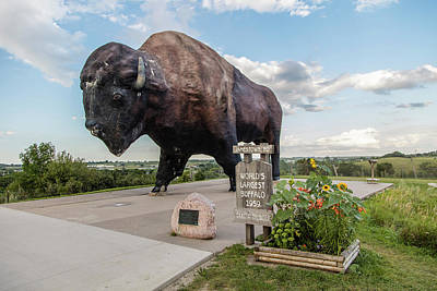Worlds Largest Buffalo In North Dakota  Print by John McGraw