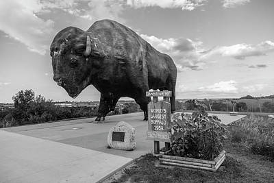 Worlds Largest Buffalo Print by John McGraw