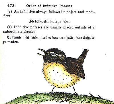 Yellow Beak Drawing - Wren by Kelly Basinger