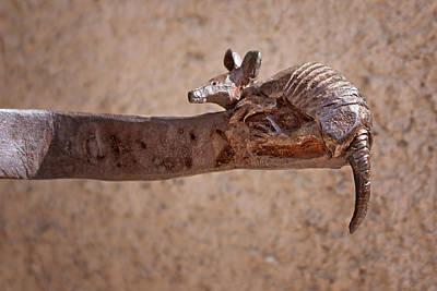 Brown Toned Art Photograph - Wrought Iron - Armadillo by Nikolyn McDonald