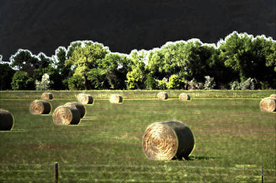 Pasture Scenes Mixed Media - Wyoming Hay Rolls On The Ranch 02 Pa 02 by Thomas Woolworth