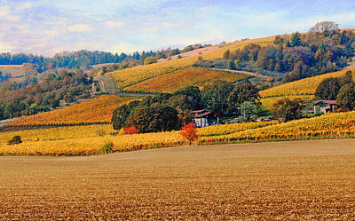 Vineyard Digital Art - Yamhill Valley Vineyards by Margaret Hood