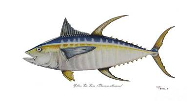 Yellow Fin Tuna Original by Ted Reeves