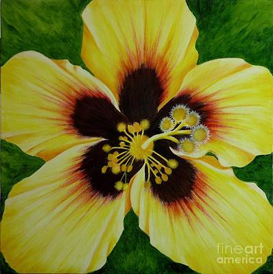 Yellow Hibiscus Macro Print by Mary Deal