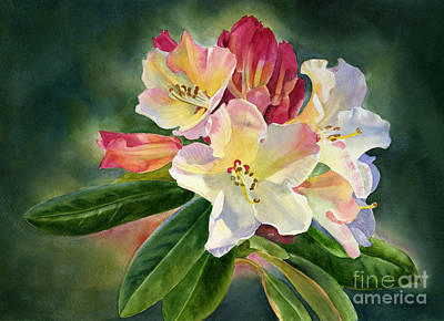 Yellow Rhododendron Dark Background Print by Sharon Freeman