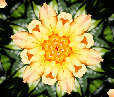 Yellow Rose Kaleidoscope  Print by Cathie Tyler