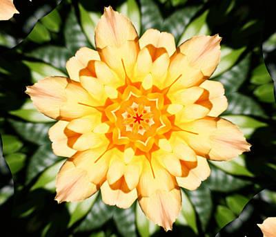 Oregon Art Photograph - Yellow Rose Kaleidoscope  by Cathie Tyler
