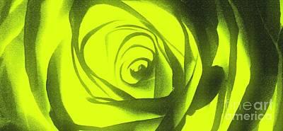 Yellow Rose Of Texas II Print by Al Bourassa