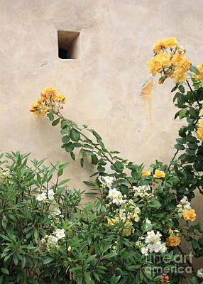 Roses Photograph - Yellow Roses And Tiny Window At Carmel Mission by Carol Groenen