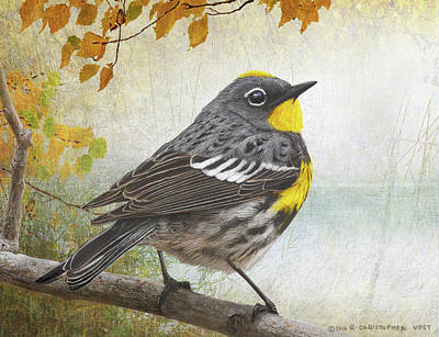 Warbler Digital Art - Yellow Rumped Warbler Portrait by R christopher Vest