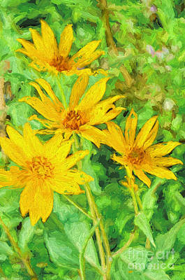 Yellow Summer Wildflowers I Print by Debbie Portwood
