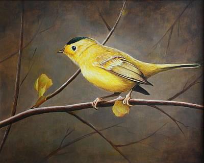 Yellow Warbler Original by Pam Kaur