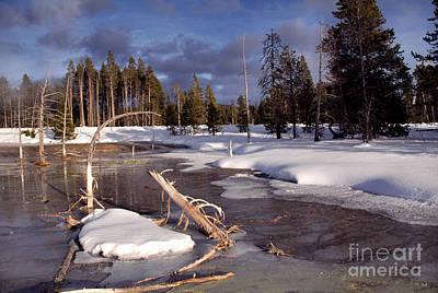 Yellowstone National Park Print by Thomas R Fletcher