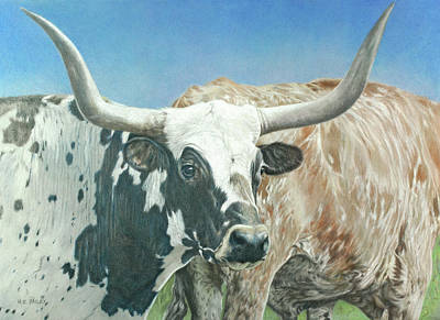 Steer Drawing - Yes, This Is Texas by Helen Bailey