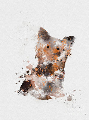 Adorable Mixed Media - Yorkshire Terrier by Rebecca Jenkins