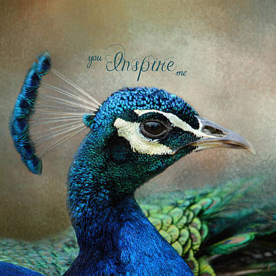 Peacock Photograph - You Inspire Me - Peacock Art by Jai Johnson