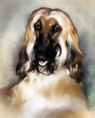 Young Afghan Hound   Portrait Print by Darlene Kwiatkowski