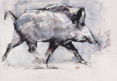 Pig Drawing - Young Boar by Mark Adlington