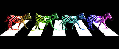 Zebra Crossing Pop Art On Black And White Print by Gill Billington