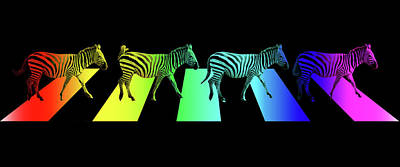 Zebra Crossing Pop Art On Black Print by Gill Billington
