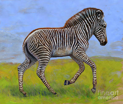 Zebra Foal  Print by Svetlana Ledneva-Schukina