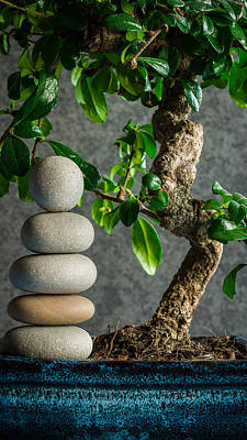 Zen Stones And Bonsai Tree II Print by Marco Oliveira