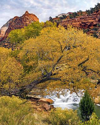 Zion Canyon Autumn Print by Leland D Howard