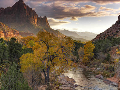 Southern Utah Photograph - Zion National Park Autumn by Leland D Howard