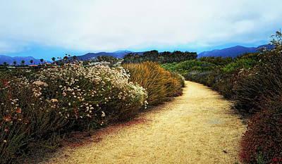 Santa Monica Digital Art - Zuma Beach Pathway by Glenn McCarthy Art and Photography