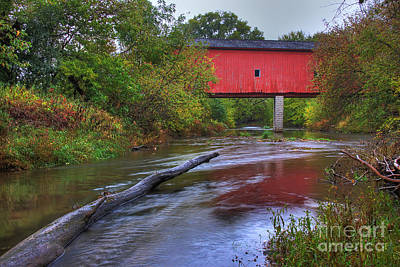 Zumbrota Minnesota Historic Covered Bridge 5 Print by Wayne Moran