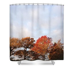 Autumn Shower Curtain by Les Cunliffe