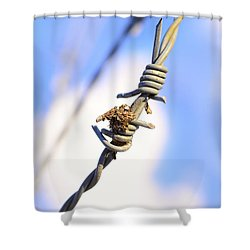 Barb Wire Shower Curtain by Toppart Sweden